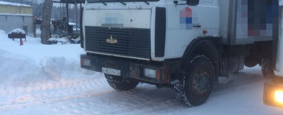 МАЗ 5731 Купава